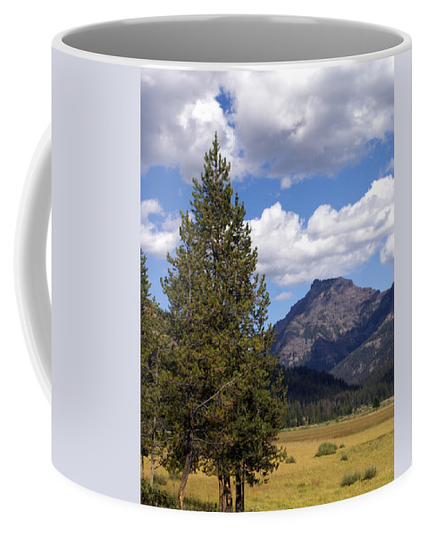 Yellowstone National Park Coffee Mug featuring the photograph Yellowstone Landscape by Marty Koch