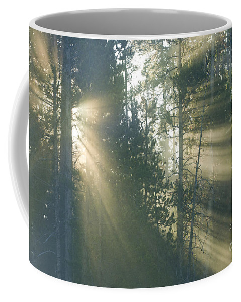 Yellowstone Coffee Mug featuring the photograph Yellowstone Morning by Sandra Bronstein