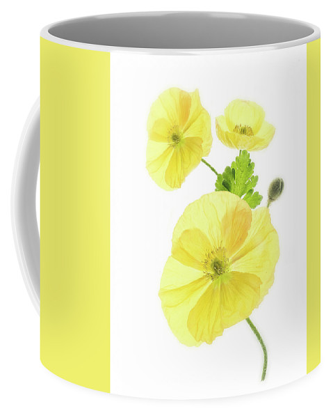 Poppies Coffee Mug featuring the photograph Beauty And Translucency Of Poppies. by Usha Peddamatham