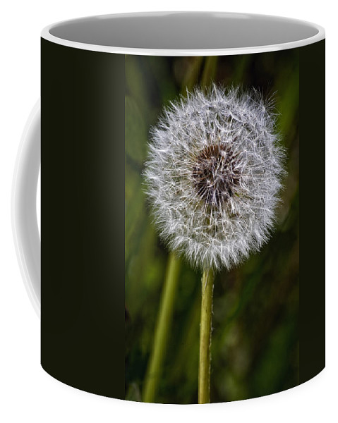 Floral Coffee Mug featuring the photograph Yippee by Steve Harrington