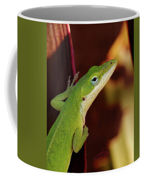 Lizard Coffee Mug featuring the photograph You Know Better by April Zaidi