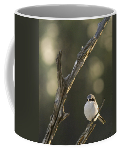 Bird Coffee Mug featuring the photograph You Lookin At Me by Phill Doherty