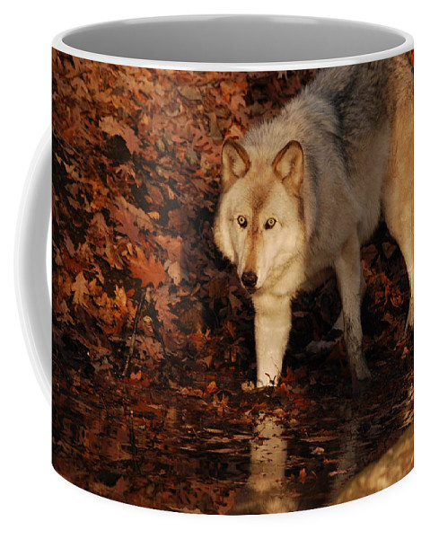 Wolf Coffee Mug featuring the photograph You Want A Piece Of Me by Lori Tambakis