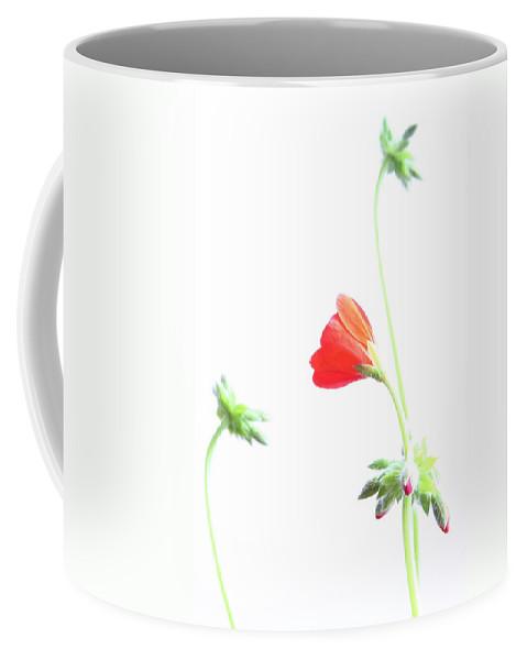 Geranium Coffee Mug featuring the photograph Young Geranium Fine Art Photography Print by James BO Insogna