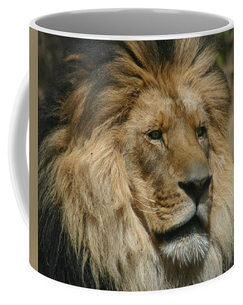 Lion Coffee Mug featuring the photograph Your Majesty by Anthony Jones