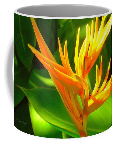 Heliconia Coffee Mug featuring the photograph You're My Light by James Temple