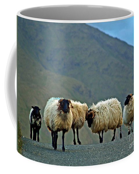 Fine Art Photography Coffee Mug featuring the photograph You're On Our Turf Now by Patricia Griffin Brett