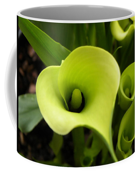 Nature Coffee Mug featuring the photograph Calla Lilies by Shannon Turek