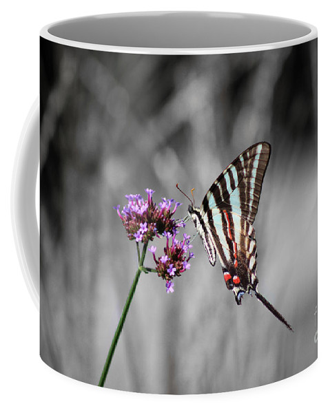 Zebra Coffee Mug featuring the photograph Zebra Swallowtail Butterfly And Stripes by Karen Adams