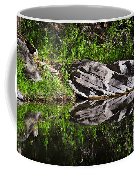 Skip Hunt Coffee Mug featuring the photograph Zen Pool by Skip Hunt
