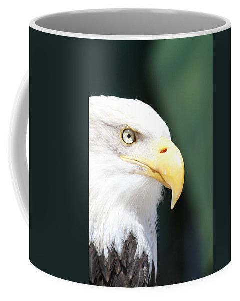 Eagle Coffee Mug featuring the photograph Zeroed In by Laddie Halupa