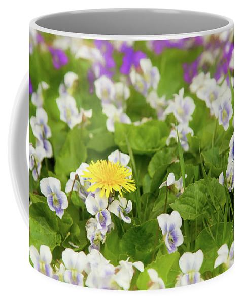 Dandelion Coffee Mug featuring the photograph I Choose Spring by Marilyn Cornwell