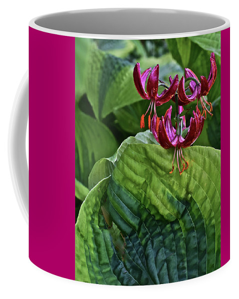 Flower Coffee Mug featuring the photograph 2019 June At The Gardens Lily And Hosta by Janis Nussbaum Senungetuk