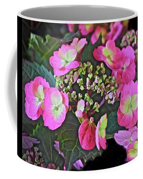 Flowers Coffee Mug featuring the photograph 2019 June At The Gardens Tuff Stuff Hydrangea by Janis Nussbaum Senungetuk
