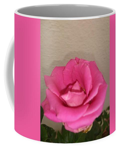 Coffee Mug featuring the photograph Rose by Nimu Bajaj and Seema Devjani