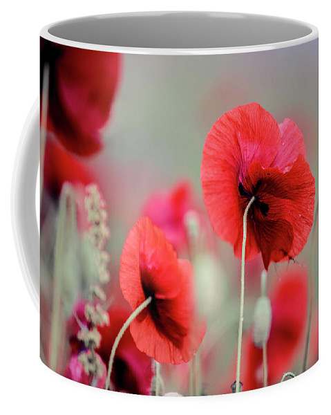 Poppy Coffee Mug featuring the photograph Red Corn Poppy Flowers by Nailia Schwarz