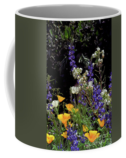 Spring Coffee Mug featuring the photograph A Bouquet from God by Kathy McClure