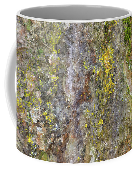 Nature Coffee Mug featuring the mixed media Along The Trail 3 by Angelina Tamez