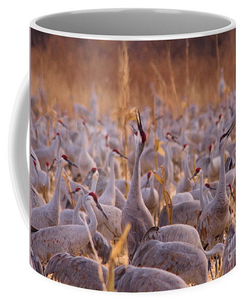 Crane Coffee Mug featuring the photograph And One Sings Out by Jeff Swan