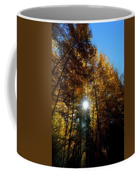 Aspens Coffee Mug featuring the photograph Aspens Sunlight 2 by Brian Goodbar
