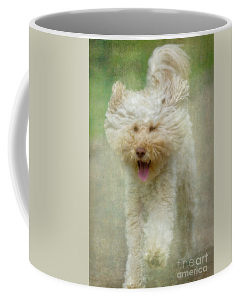 Australian Labradoodle Coffee Mug featuring the photograph Australien Labradoodle Dog by Heiko Koehrer-Wagner