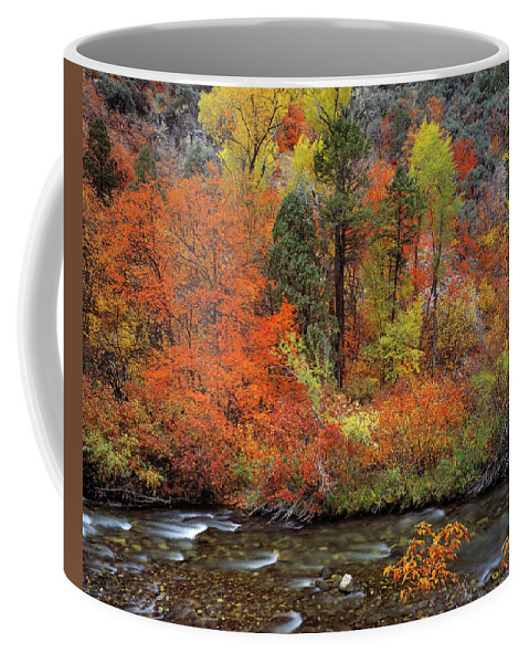Idaho Scenics Coffee Mug featuring the photograph Autumn Creek by Leland D Howard
