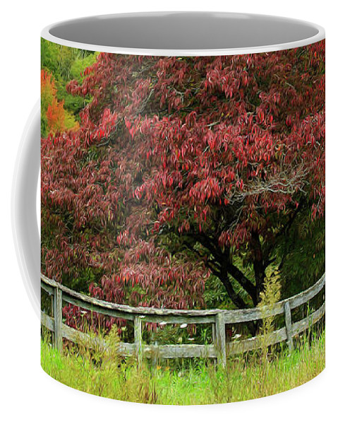 Fall Coffee Mug featuring the photograph Autumn Fenceline by SL Ernst