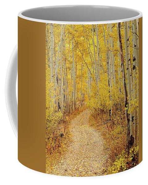Autumn Coffee Mug featuring the photograph Autumn Road by Leland D Howard