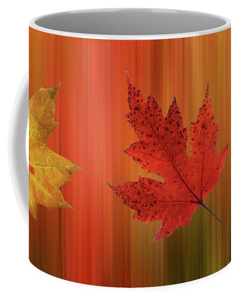 Autumn Leaves Coffee Mug featuring the photograph Autumn Spirit Panoramic by Gill Billington