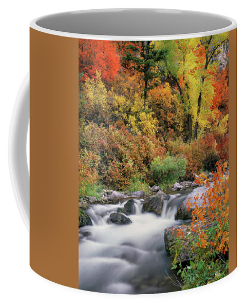 Idaho Scenics Coffee Mug featuring the photograph Autumn Splendor by Leland D Howard