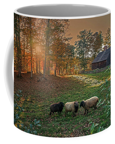 Autumn Coffee Mug featuring the photograph Autumn Sunset At The Old Farm by Wayne Marshall Chase
