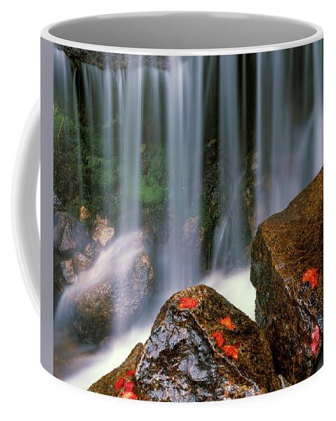Idaho Scenics Coffee Mug featuring the photograph Autumn Waterfall by Leland D Howard