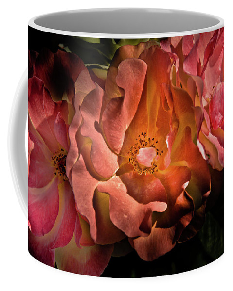 Brian Carson Coffee Mug featuring the photograph Backyard Flowers 40 Color Version by Brian Carson