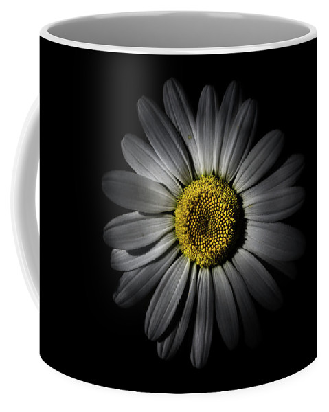 Brian Carson Coffee Mug featuring the photograph Backyard Flowers 52 Color Version by Brian Carson
