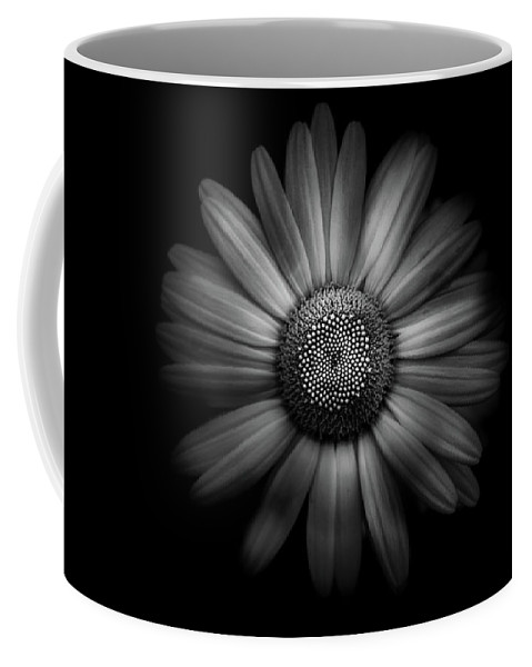 Brian Carson Coffee Mug featuring the photograph Backyard Flowers In Black And White 31 by Brian Carson