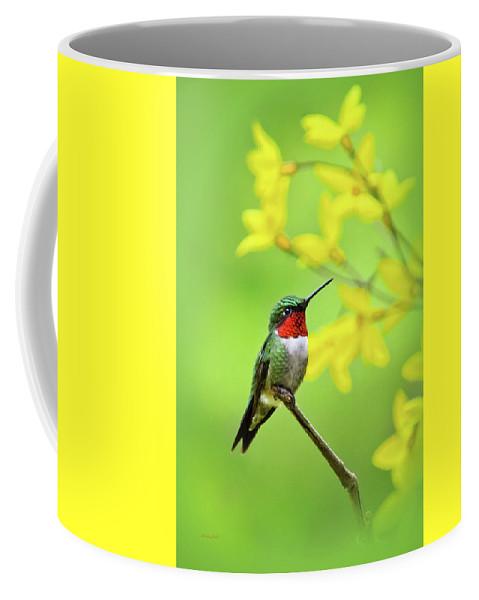 Hummingbird Coffee Mug featuring the photograph Beautiful Summer Hummer by Christina Rollo