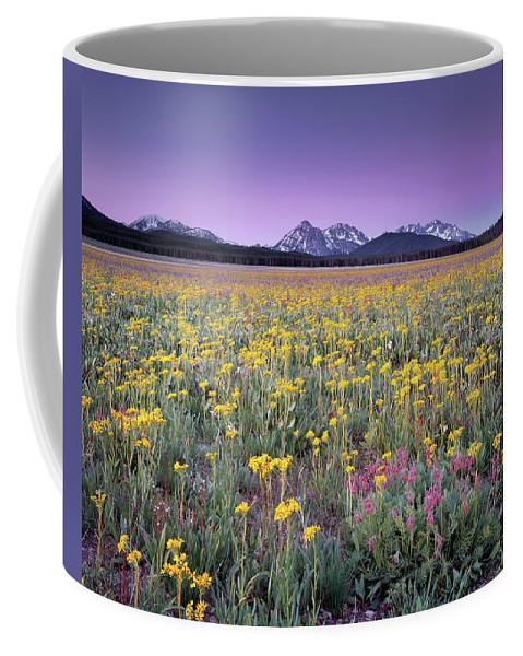 Idaho Scenics Coffee Mug featuring the photograph Central Idaho Color by Leland D Howard