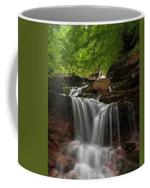 Rapid Coffee Mug featuring the photograph Cold River by Evgeni Dinev