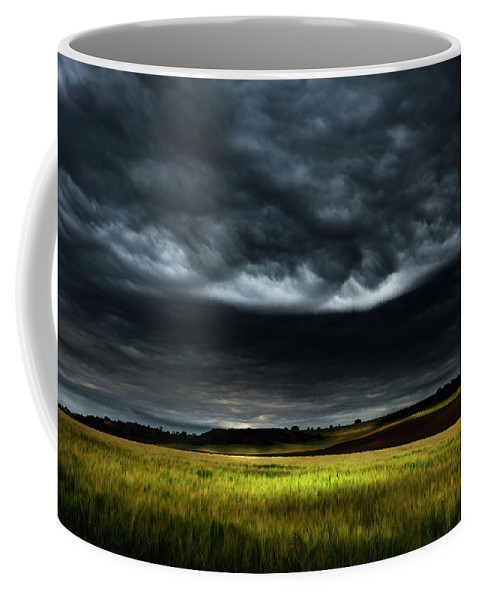 Nature Coffee Mug featuring the photograph Colorful Fields 3 by Vicente Sargues