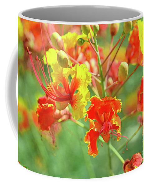 Flower Coffee Mug featuring the photograph Colorful Morning by Darryl Treon