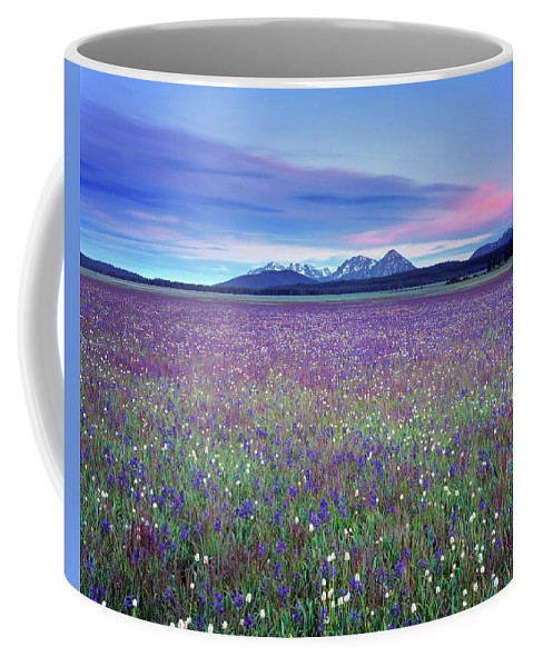 Idaho Scenics Coffee Mug featuring the photograph Colorful Mountain Spring by Leland D Howard