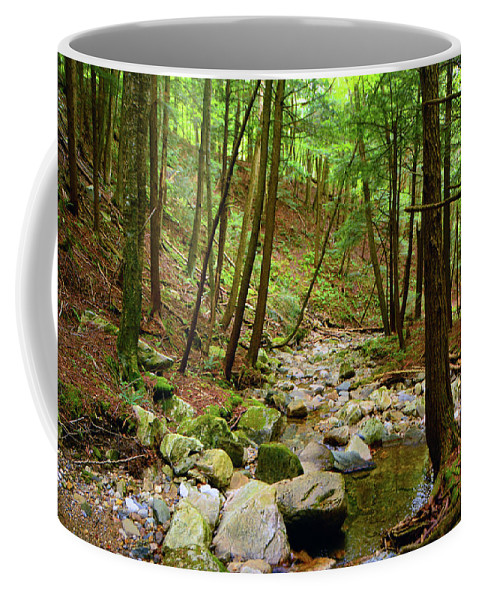 Creek In Massachusetts 2 Coffee Mug featuring the photograph Creek In Massachusetts 2 by Raymond Salani III