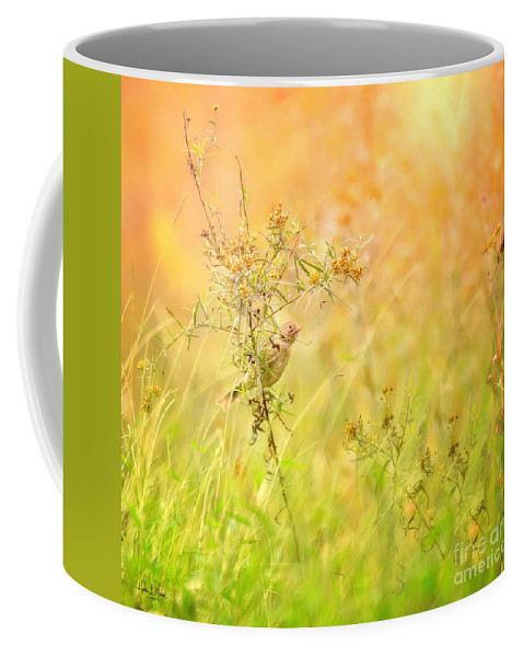 Aves Coffee Mug featuring the photograph Field Sparrow by Heather Hubbard