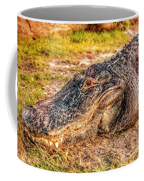 Florida Coffee Mug featuring the photograph Florida Gator 1 by Tommy Anderson