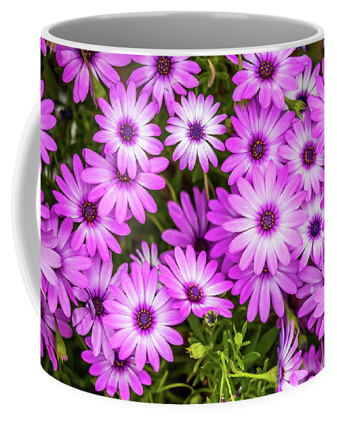 Flowers Coffee Mug featuring the photograph Flower Patterns Collection Set 04 by Az Jackson