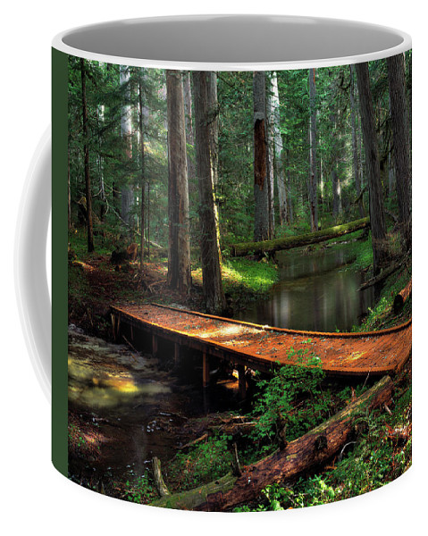 Idaho Scenics Coffee Mug featuring the photograph Forest Foot Bridge by Leland D Howard