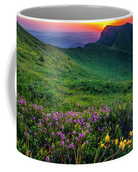 Balkan Mountains Coffee Mug featuring the photograph Goat Wall by Evgeni Dinev