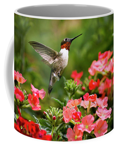 Hummingbird Coffee Mug featuring the photograph Graceful Garden Jewel by Christina Rollo