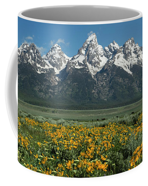 Landscapes Coffee Mug featuring the photograph Grand Teton Summer by Sandra Bronstein