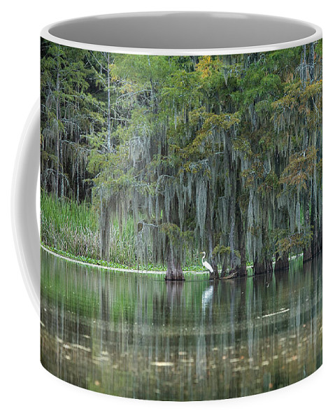 Heron Coffee Mug featuring the photograph Great White Heron On Concordia Lake by SL Ernst